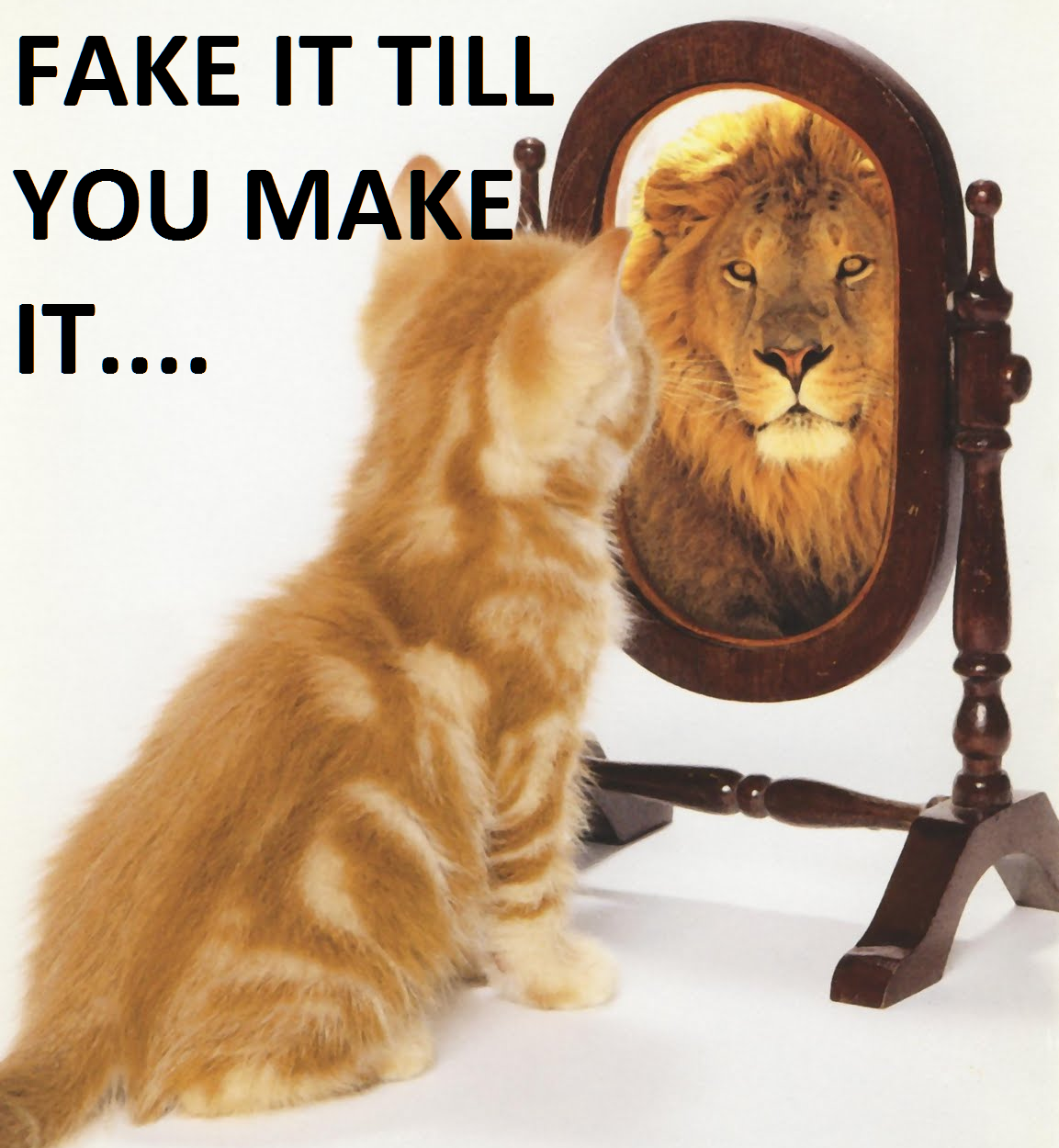 fake_it_until_you_make_it_