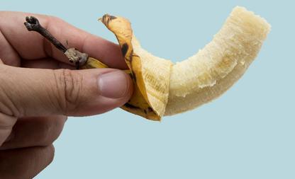kleine penis