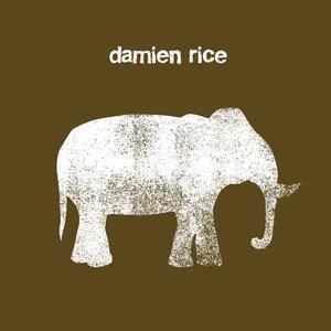 damien rice_v0.1