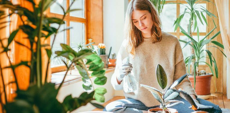 planten tegen eenzaamheid