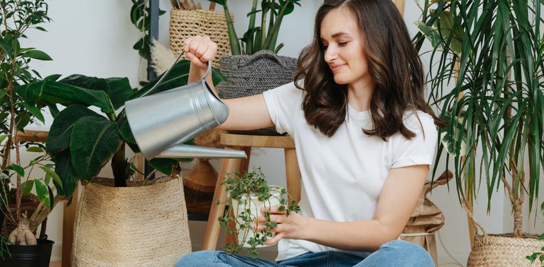 planten water