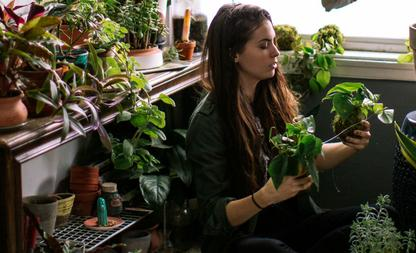plant genoeg water