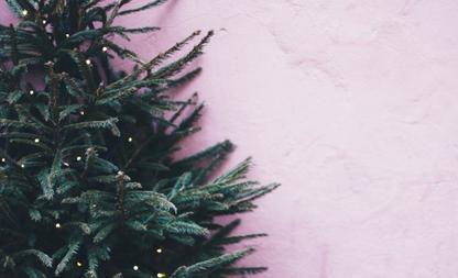 Kerstboomtrends 2020