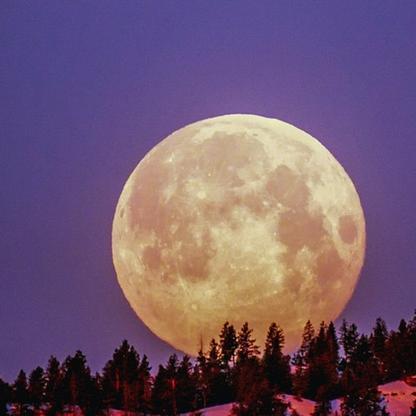 volle maan opruimwoede