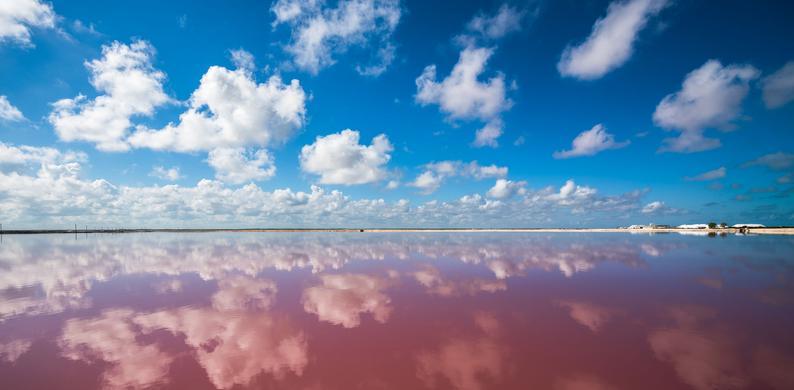roze zee mexico