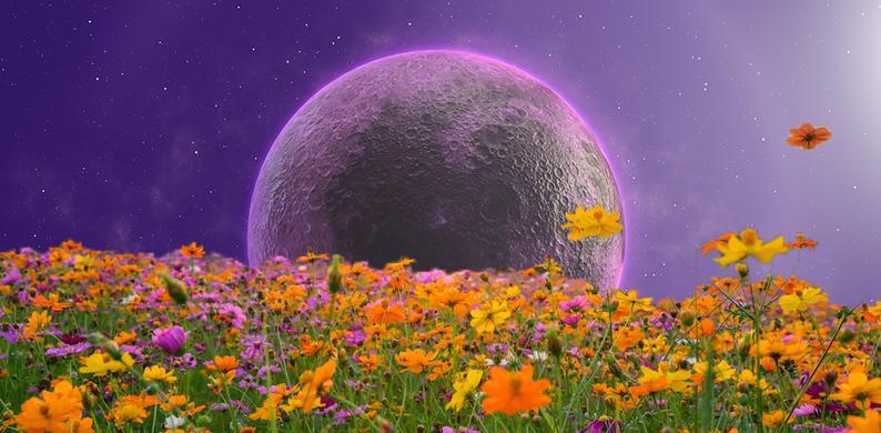 volle maan 5 juni