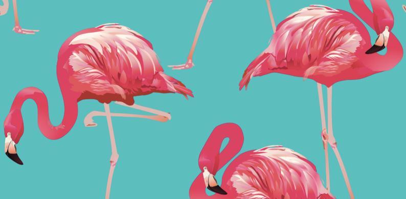 from Desmond de roze flamingo dating site