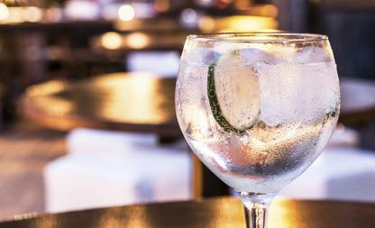 gin-tonic recepten