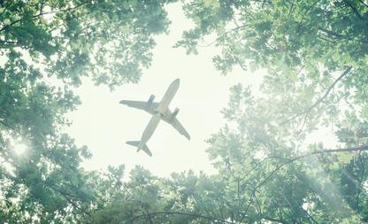 flight 338